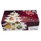 Apotheke dárková kazeta čajů vánoční 96 ks