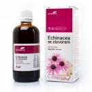 Aromatica Echinacea se zázvorem bylinné kapky 100ml