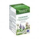 LEROS Pulmoran průduškový čaj 20x1,5g